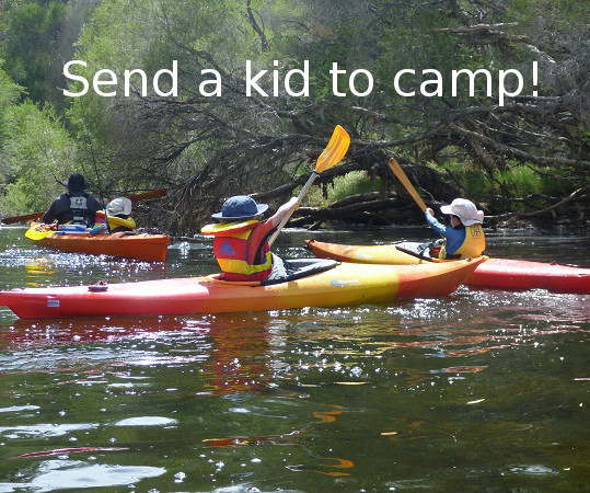 Send a kid to camp!